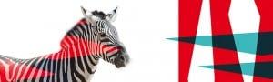 zebre et geometrie