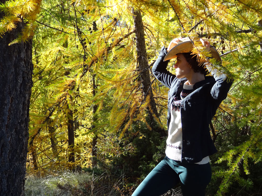 automne en cowboy dans les Alpes
