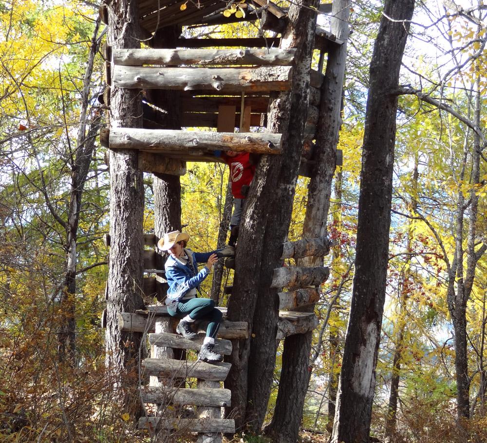 cabane géante en bois à la montagne