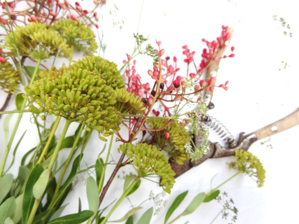 rando luberon pour un bouquet de fleurs et son secateur