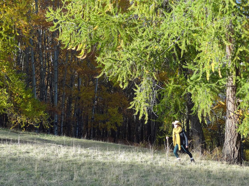 alpes automne balade