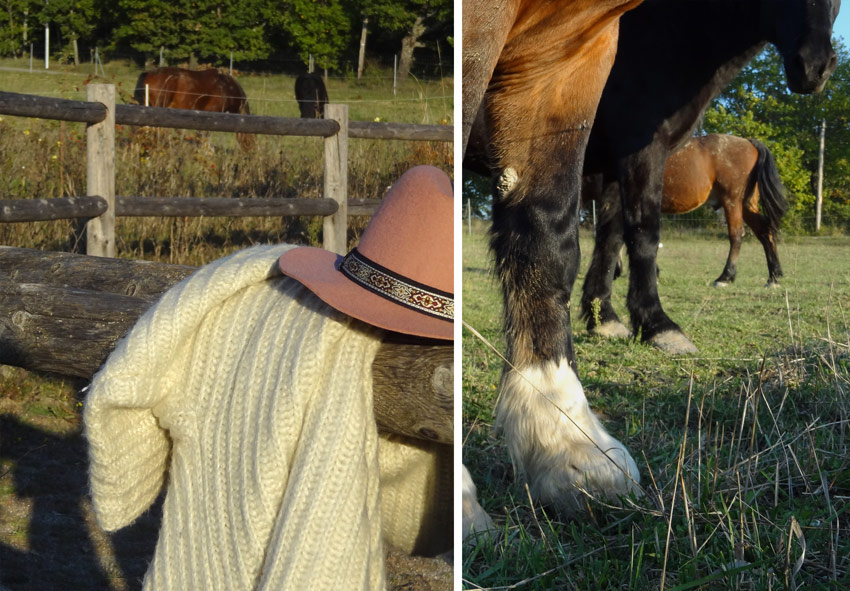gypsy mode look chevaux au ranch