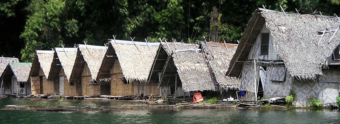 meilleur trekking à faire dans la jungle de Thailande Khaosok
