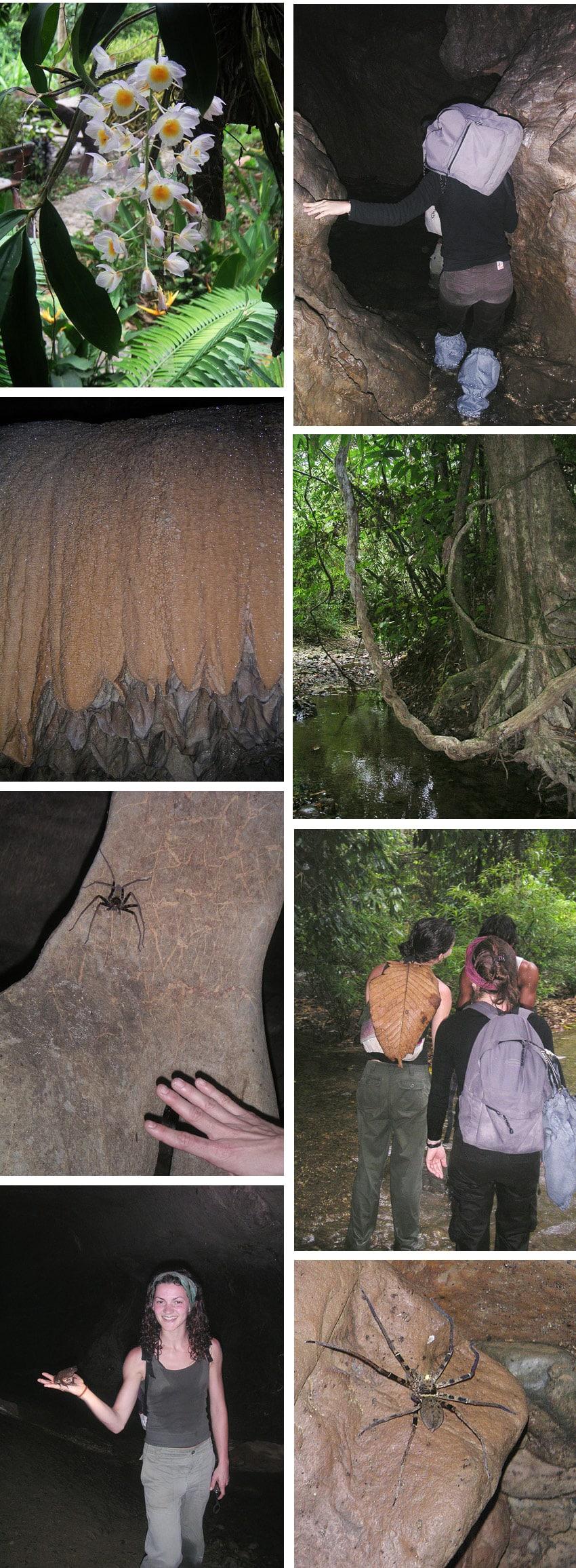 trekking dans la jungle de thailande-khao sok grotte thailande