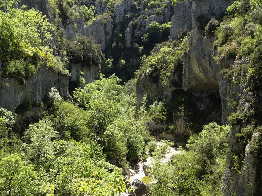 gorges d'Oppedette sorties en Provence