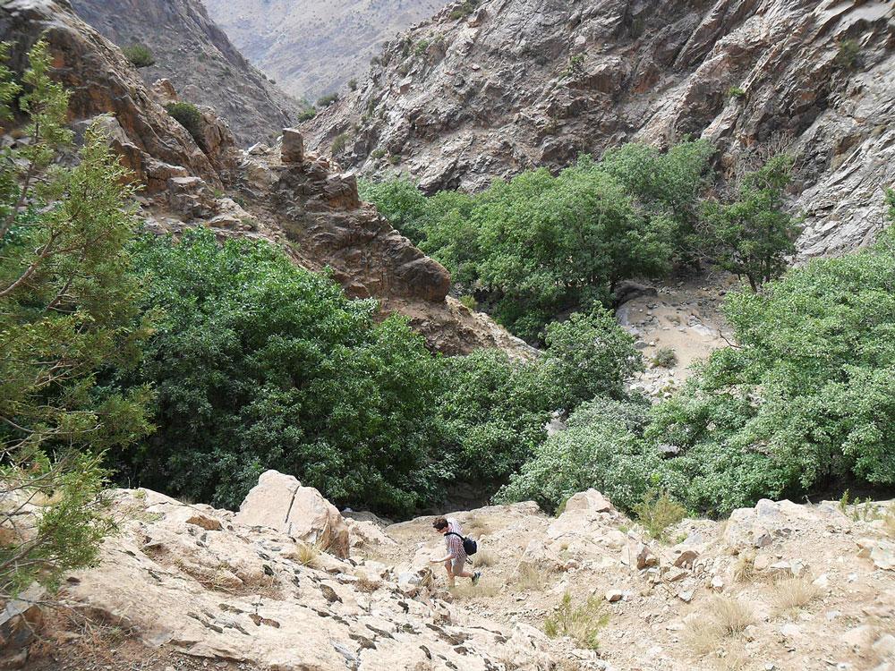 excursion maroc vallée de l'ourika