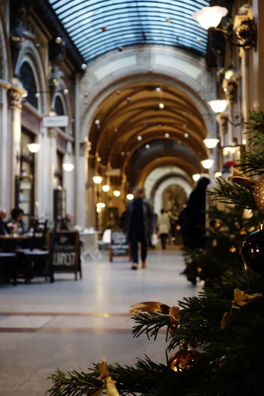 passage-cafe-viennois-marches-de-noel