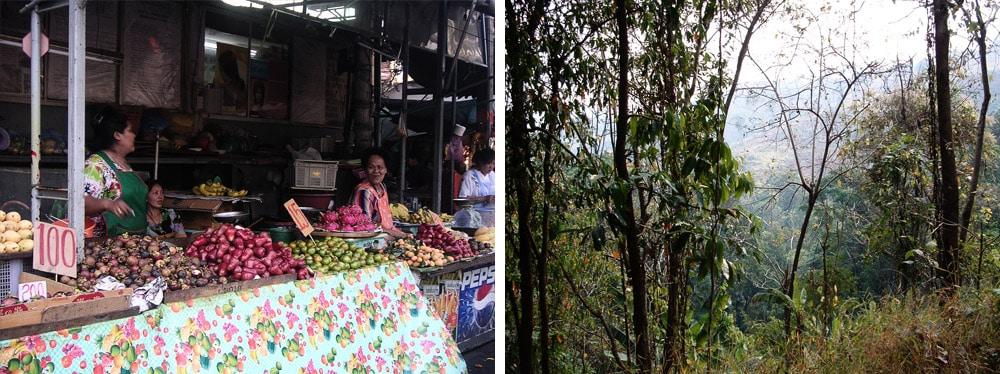 trek à Chiang Mai en Thailande