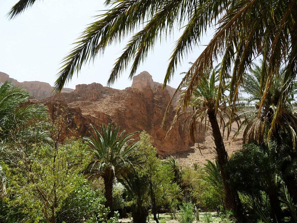 gorges-ait-mansour-sud-du-maroc-anti-atlas