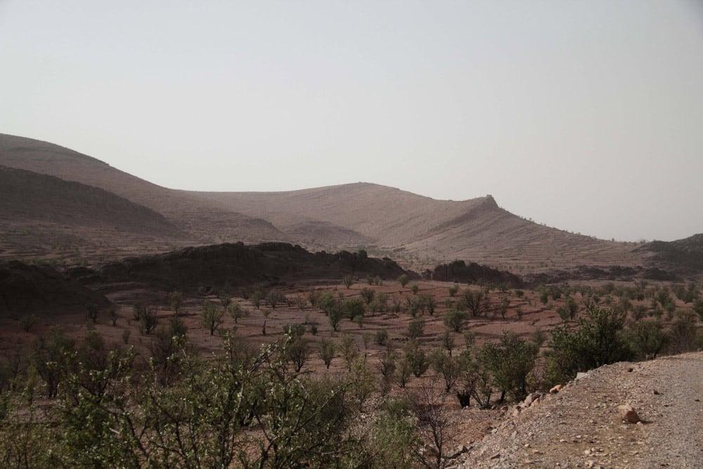 sud-de-taroudant-et-tafraoute-desert-maroc