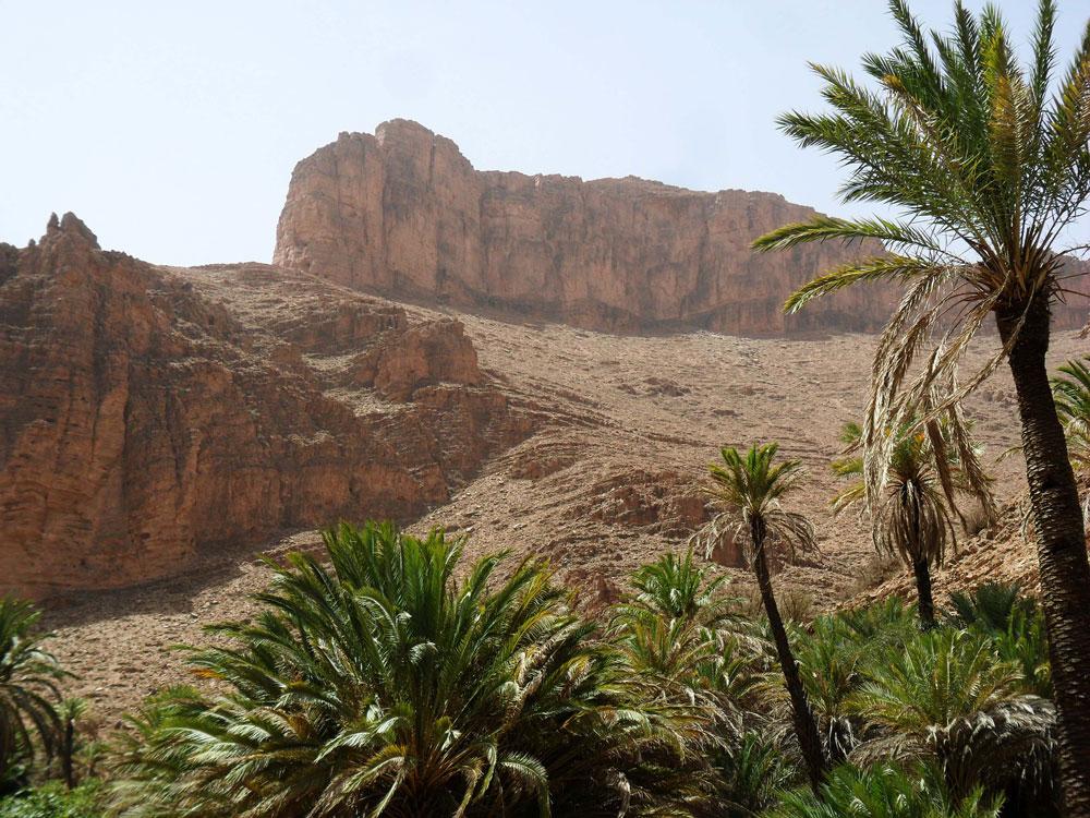 tafraoute-maroc-vallee-des-ammeln
