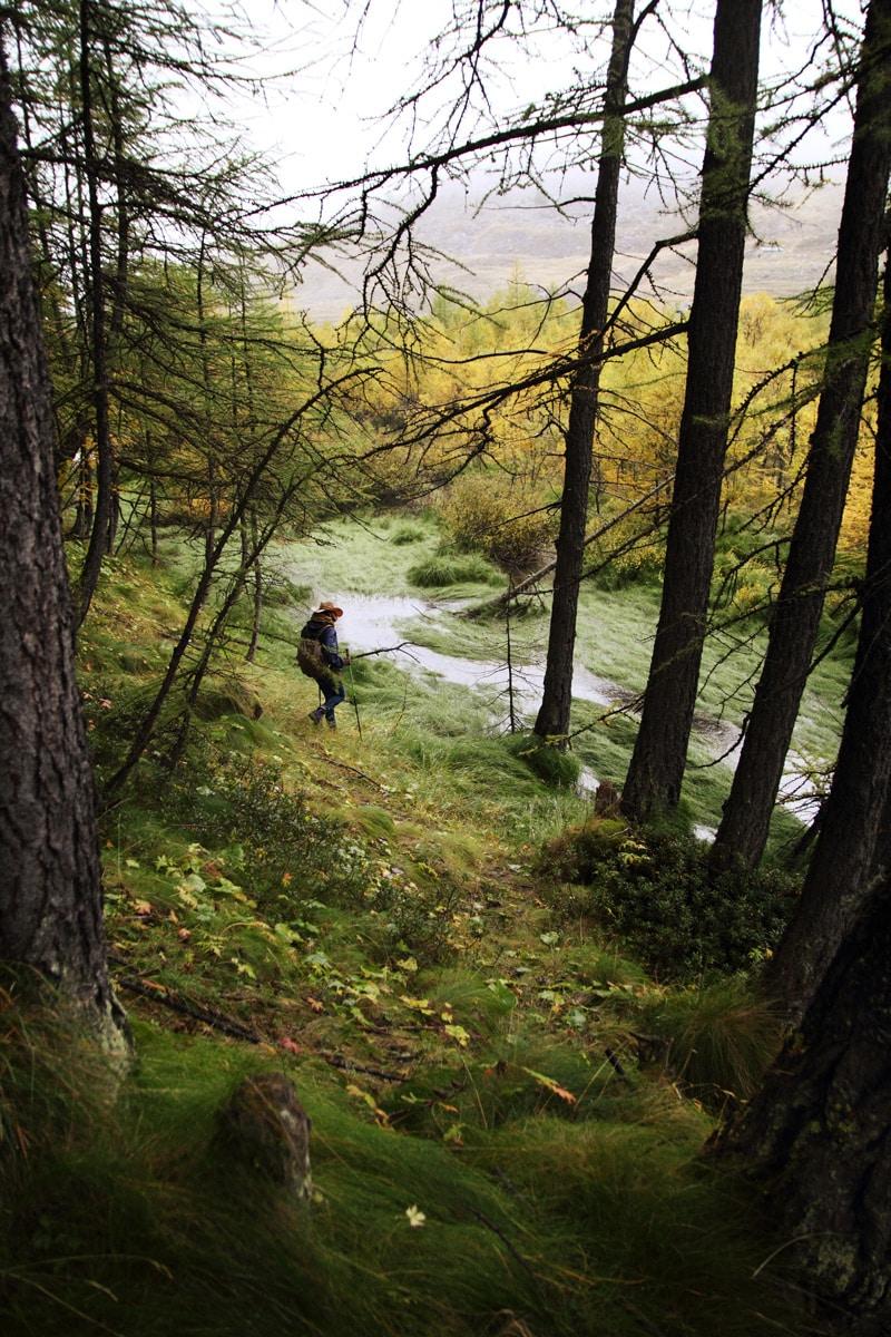Randonnée et trek en France Alpes
