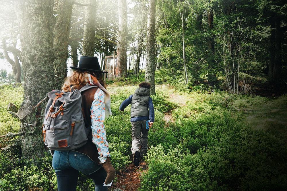 Aventure à la Tourbière de Gimel Parc naturel du Pilat