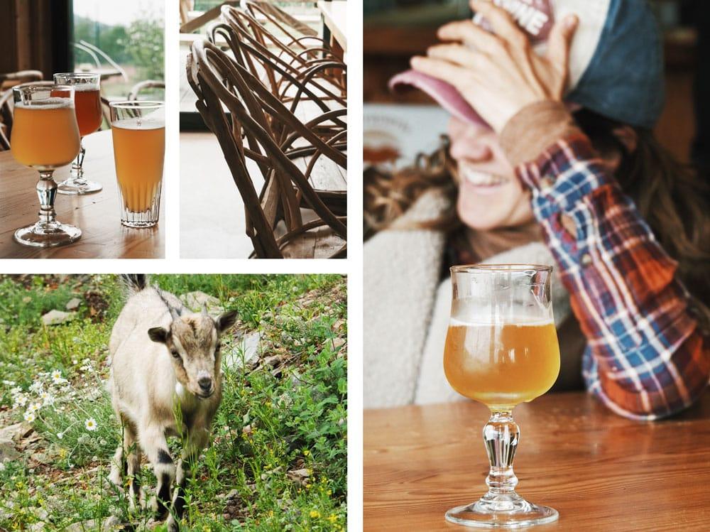 Bières artisanales bio Brasserie du Pilat