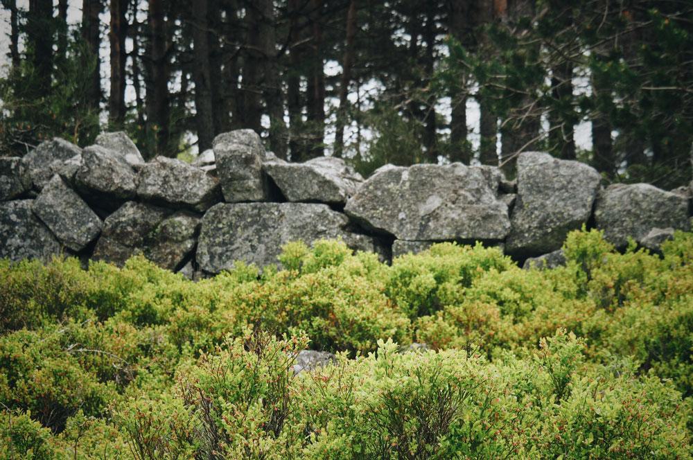 Panoramas et paysages du Parc du Pilat