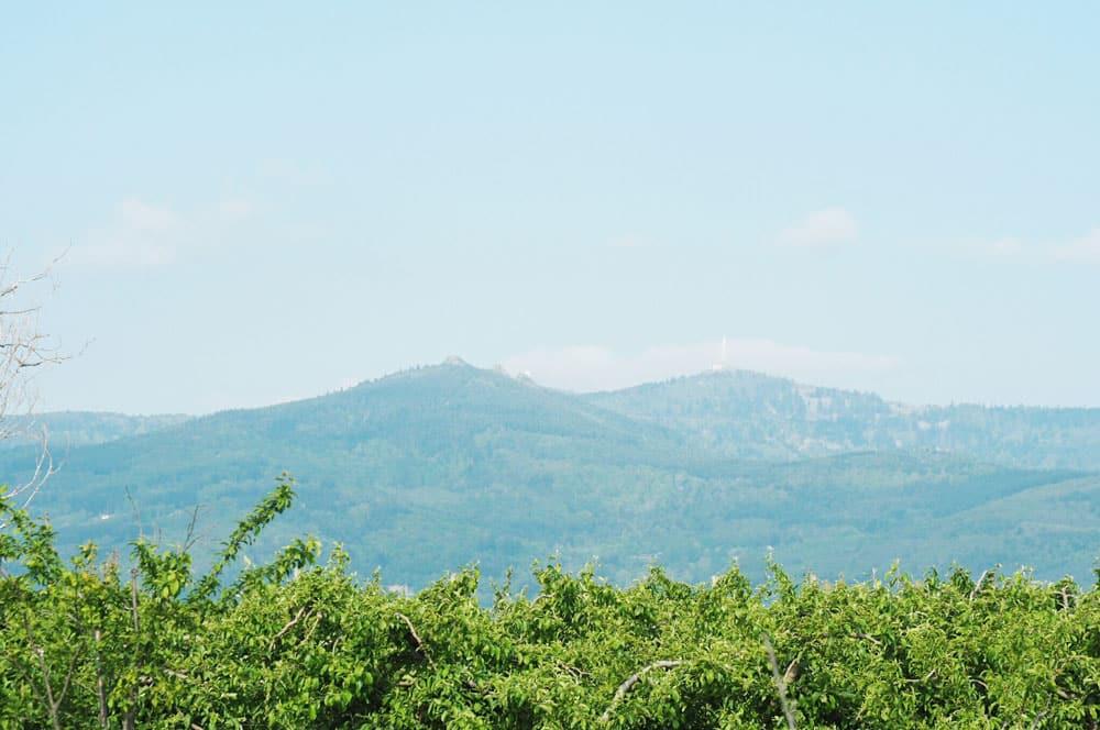 Paysage du Parc du Pilat vue sur le Pic des 3 Dents Malleval