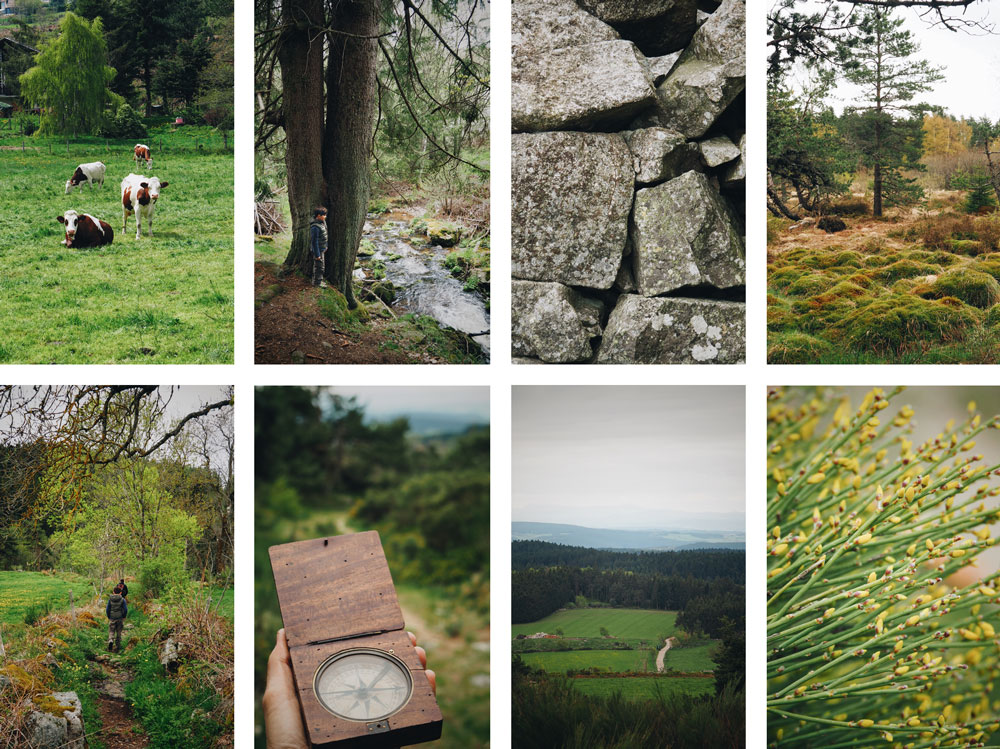 Paysages Haut Pilat Tourbières et forêts St Ginest Malifaux