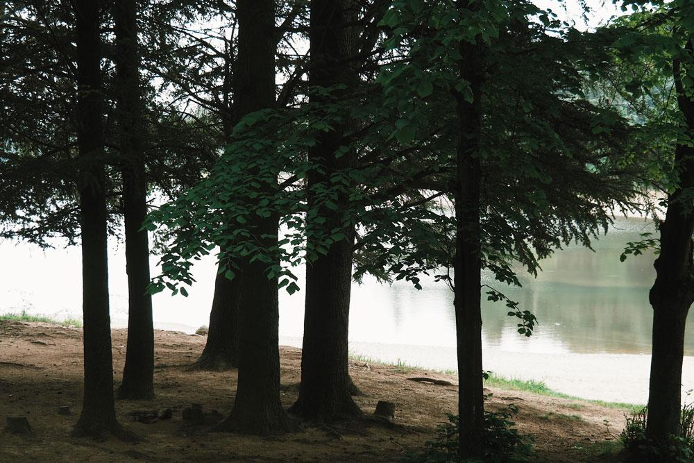 promenade autour du lac du Ternay Loire