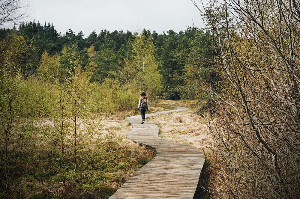 Promenade Gimel dans le massif du Pilat Loire