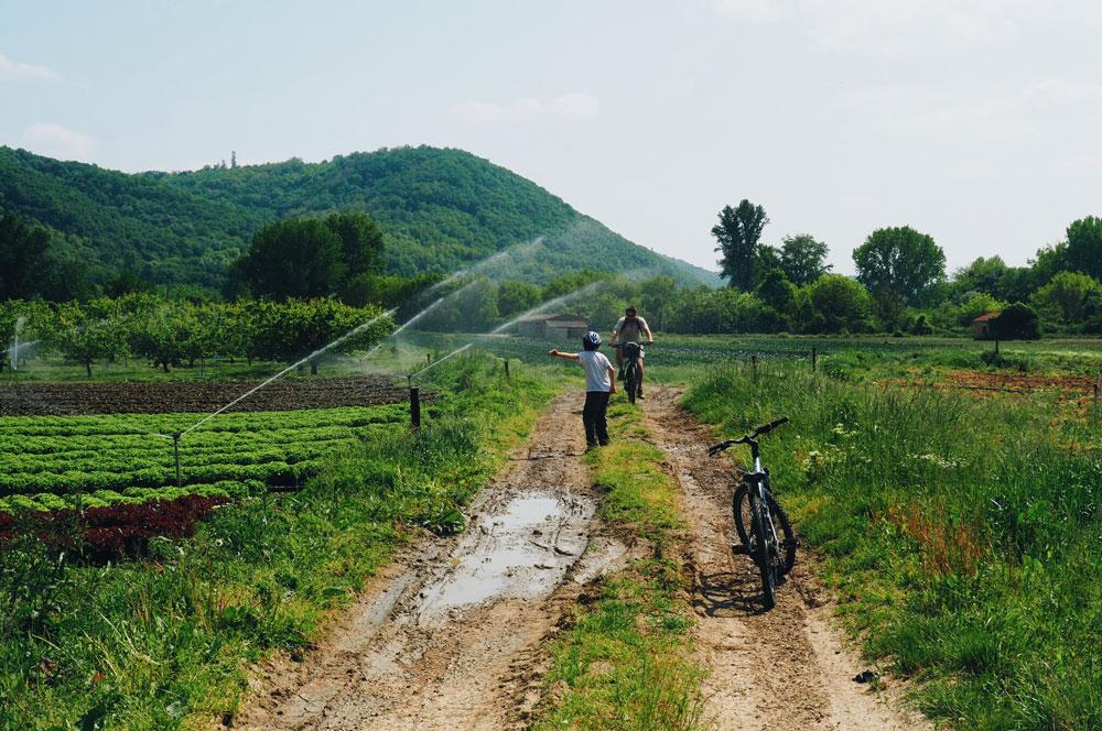 Promenade à vélo île du beurre Via Rhôna Condrieu