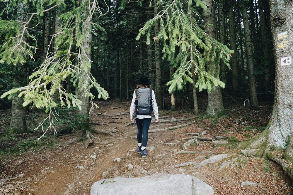 Que faire dans les Parc Naturel du Pilat ? randonnées, VTT