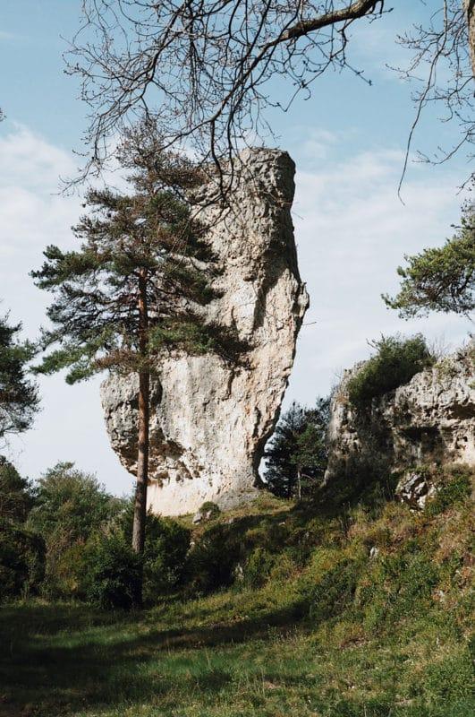 rochers site naturel Montpellier le vieux Grands Causses Millau