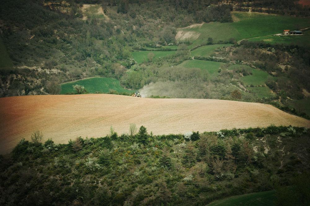 Visite Peyrelade caves Grands Causses