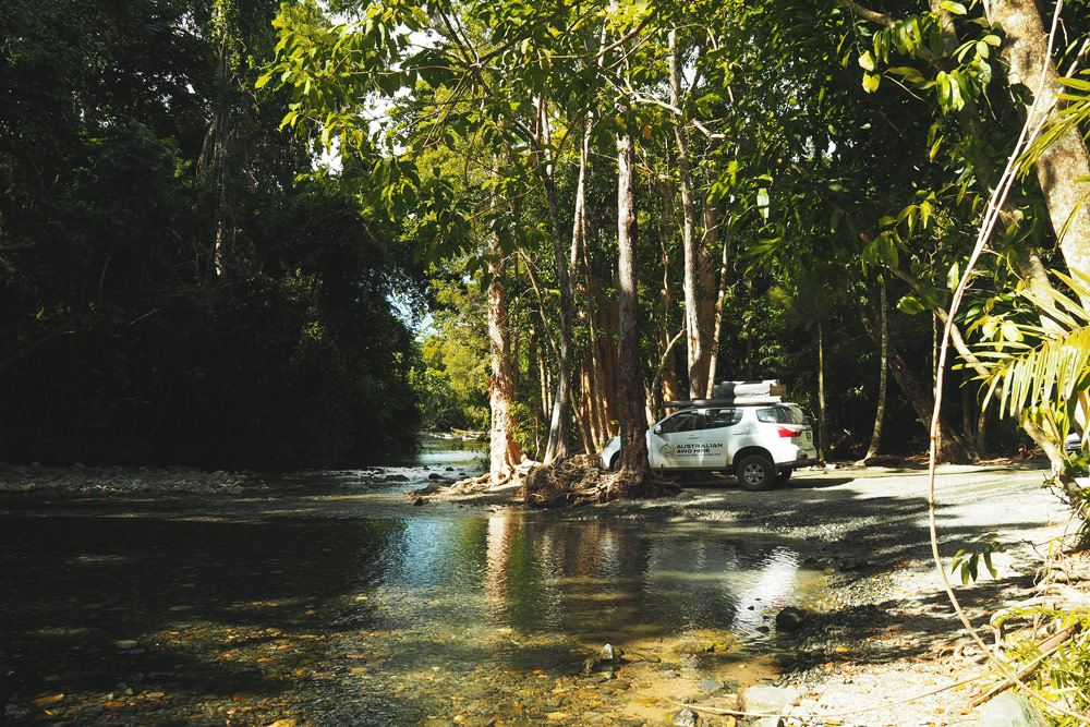 Daintree forest piste de Cape Tribulation en Australie