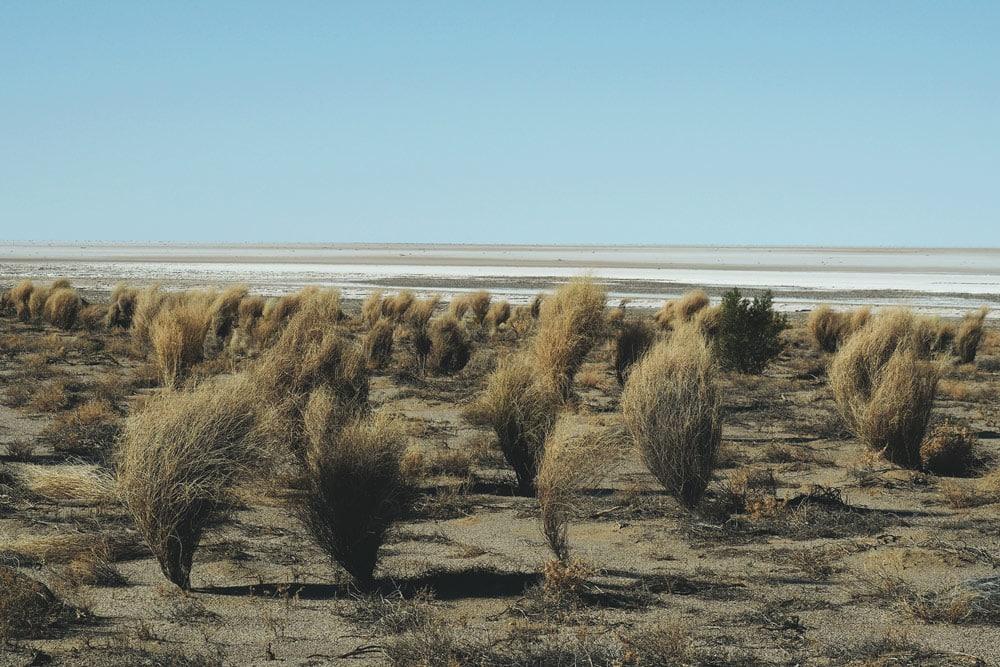 Désert Simpson et Lac Eyre sur la Oodnadatta Track