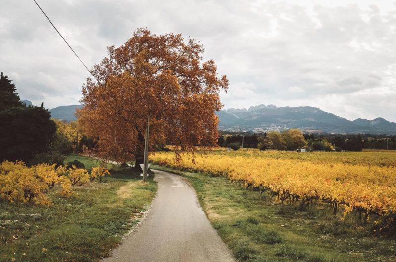 Guide complet visite du Vaucluse en automne