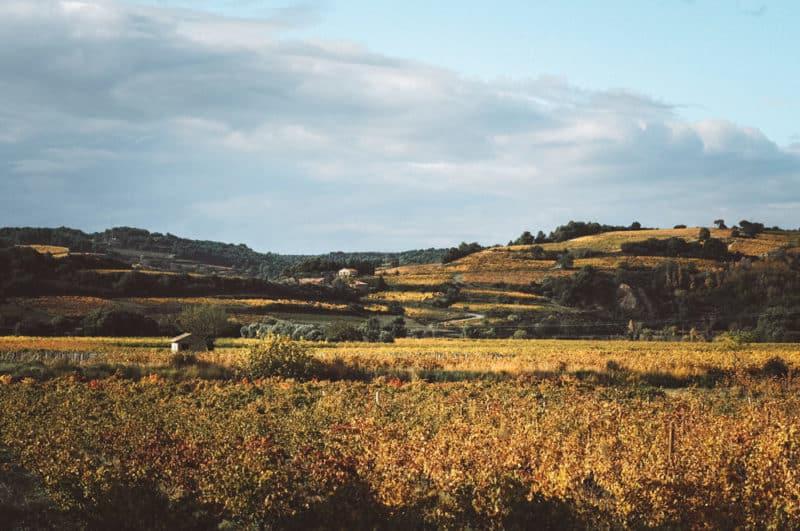 itinéraire weekend famille en Vaucluse
