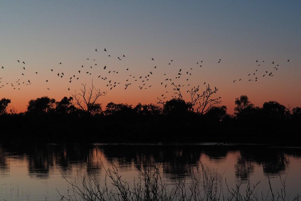 Paysage d'Australie à Birdsville Queensland