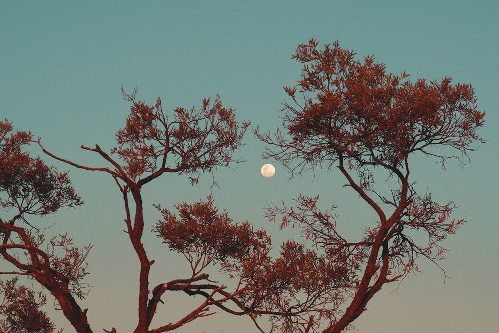 Pleine lune la veille de l'éclipse de août 2018 en Australie