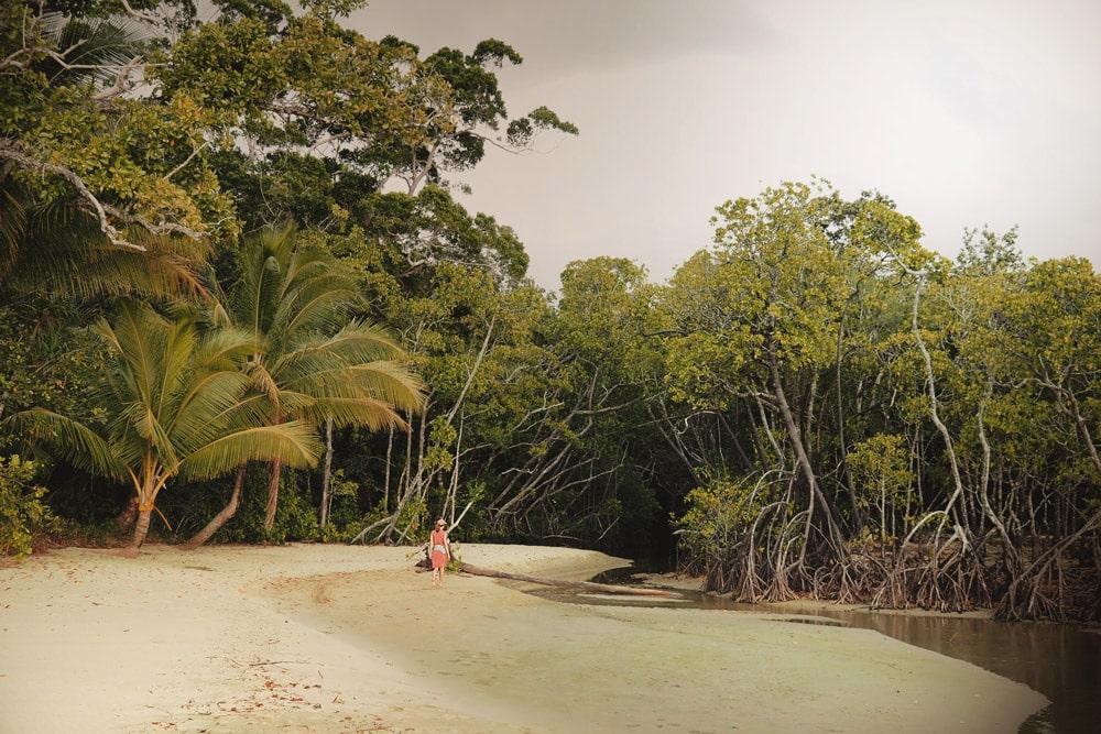 plages Cape Tribulation Nord Cairns Australie