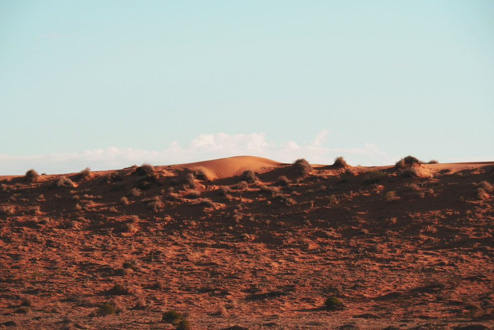 Voir le Simpson Desert près de Birdsville