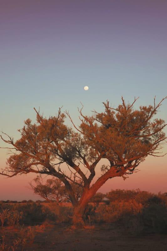 Traverser le désert en 4x4 Australie