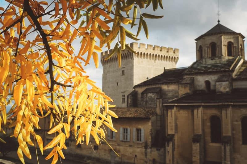 visiter Palais des Papes Avignon Toussaint