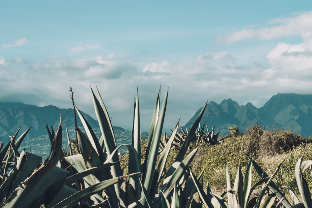 guide 1 semaine à la Réunion vacances de décembre