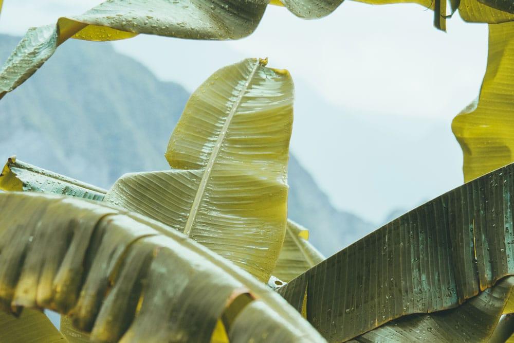 visiter cirque de Salazie Réunion en 5 jours