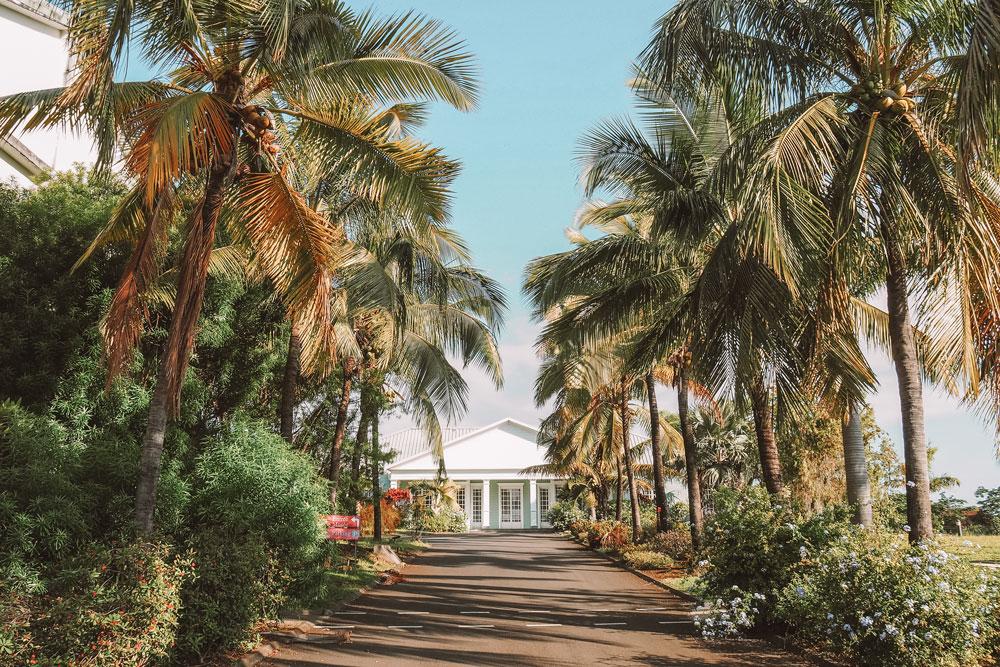 visiter musée du rhum Saga du Rhum Réunion