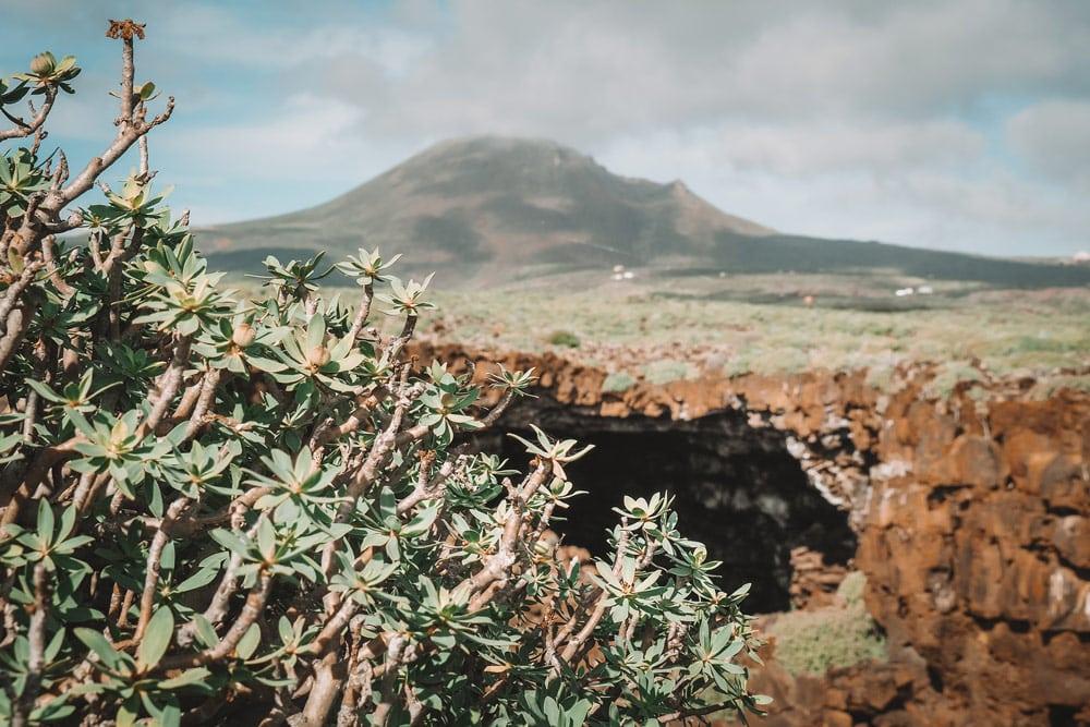 voir lameo volcan Corona nord de Lanzarote