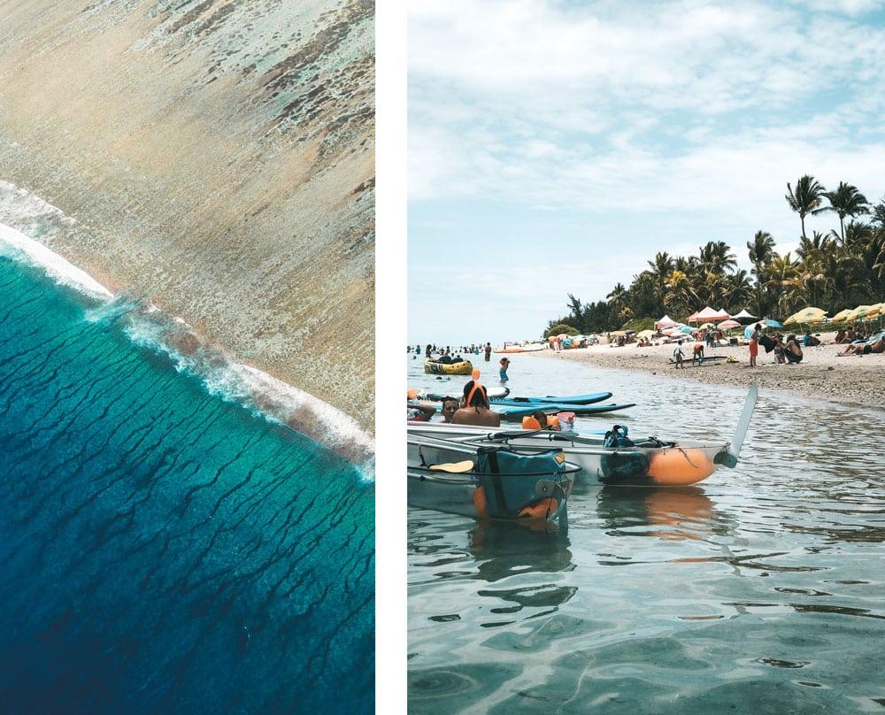 quelles sont les plages sans requins
