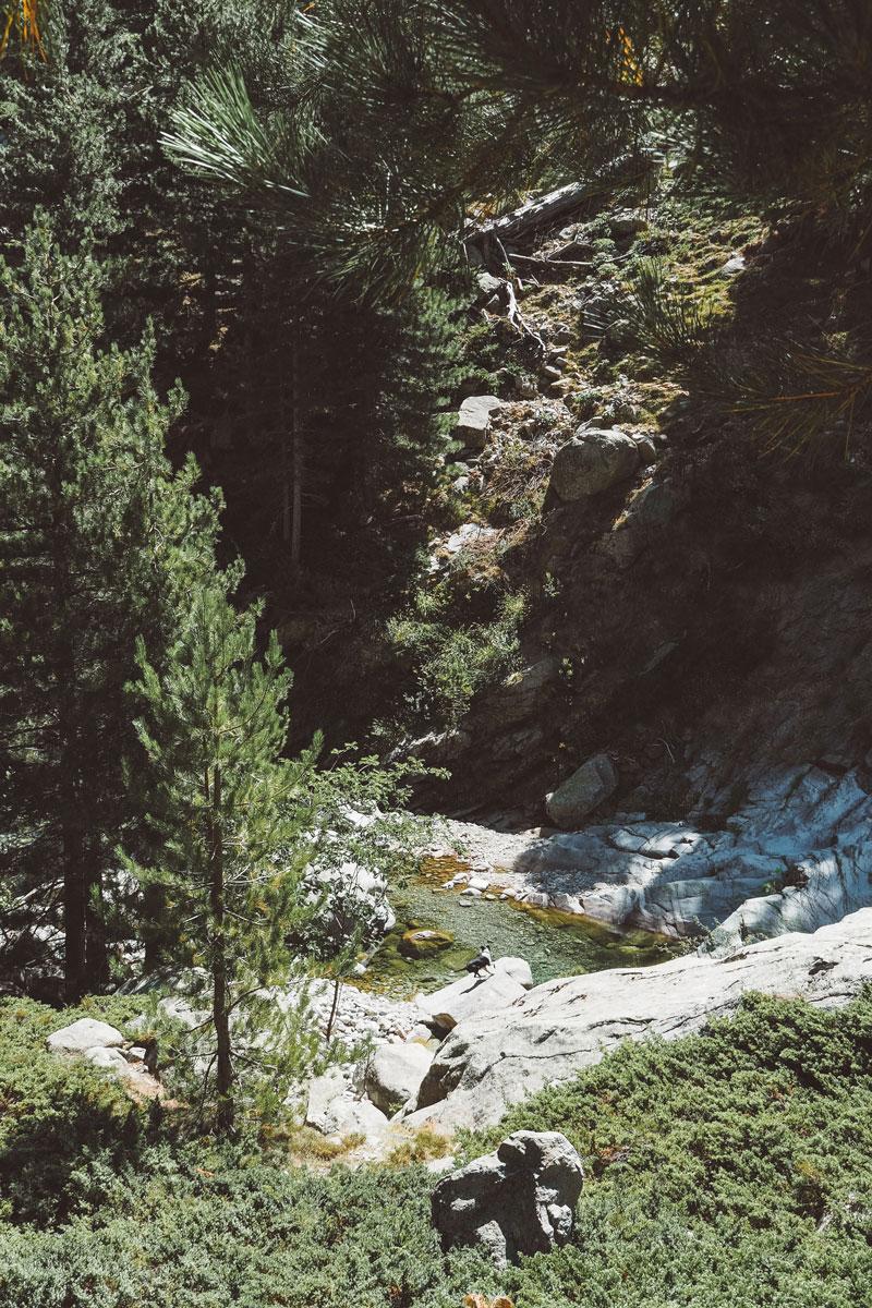 plus beau canyon de Corse Restonica Asco