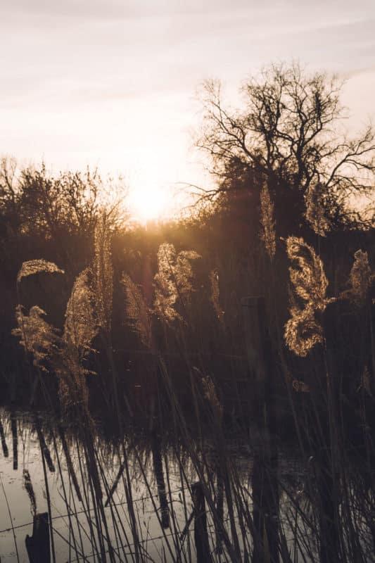 faire le coucher de soleil Pont de Gau