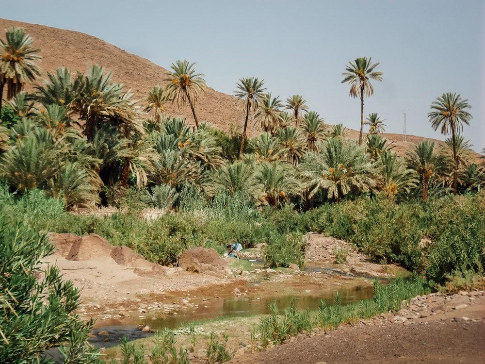 avis et conseils préparer son voyage au Maroc