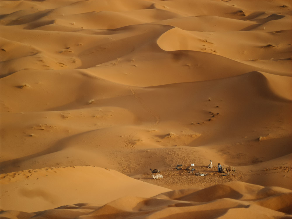 quel désert choisir entre Mhamid et Merzouga