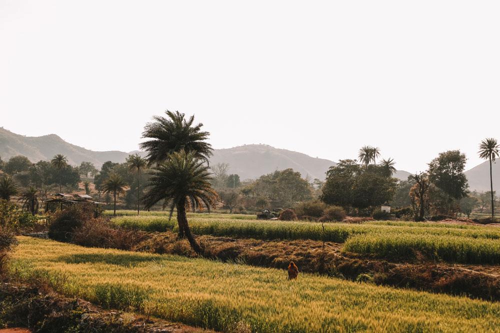 road trip Rajasthan 15 jours