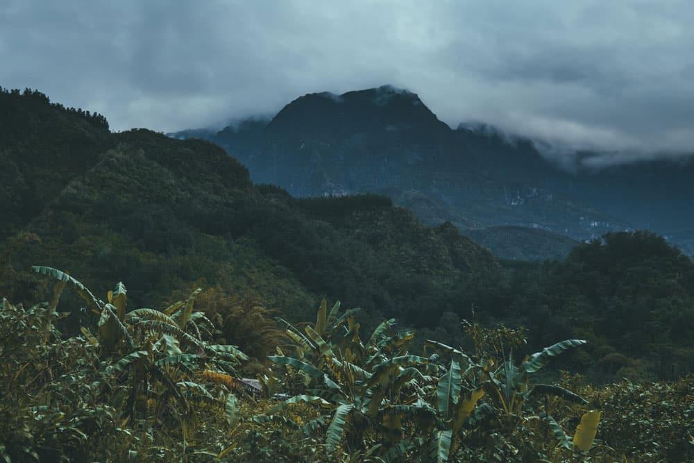 ville jungle tropicale île de la Réunion blog voyage