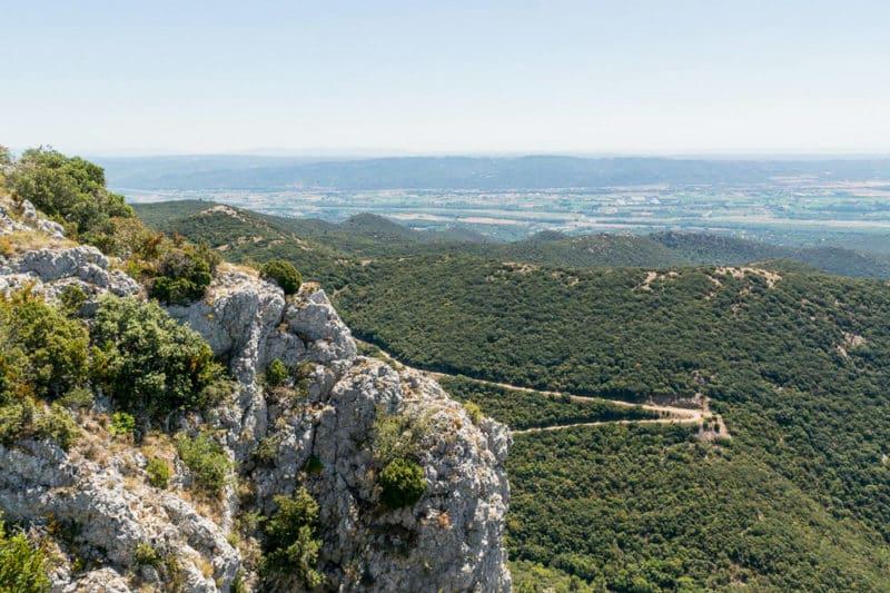 panorama forêt des cèdres Luberon