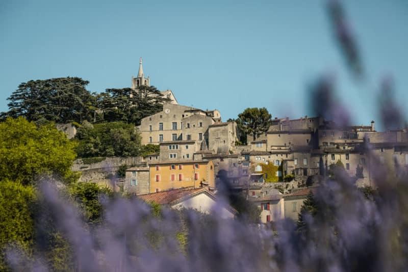 où voir les lavandes du Luberon ?
